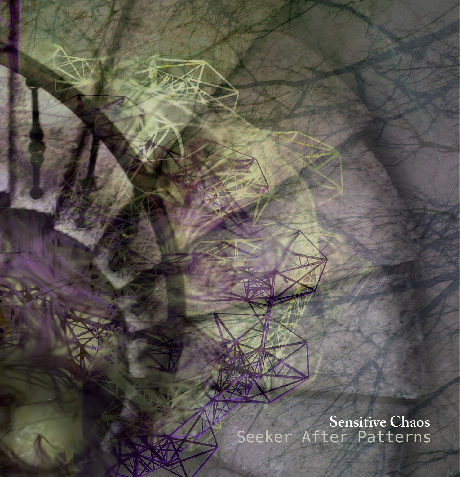 Seeker After Patterns Sensitive Chaos Storm Electronica April 2012 Cover